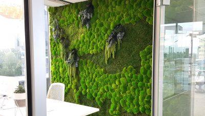 Groene Luxe mos wand met meerdere kleuren